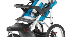 Schwinn Turismo Single Swivel Stroller